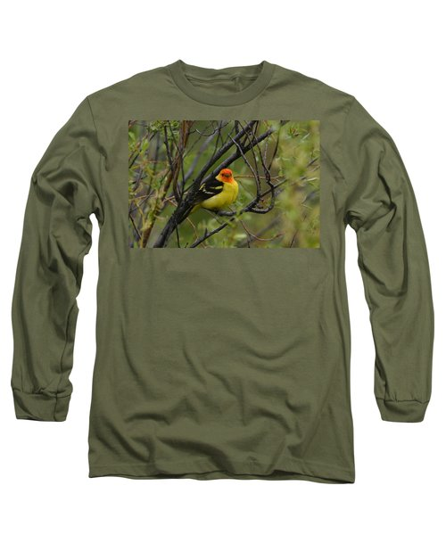 Looking At You - Western Tanager Long Sleeve T-Shirt