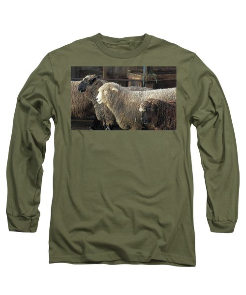 Looking For The Shepherd Long Sleeve T-Shirt