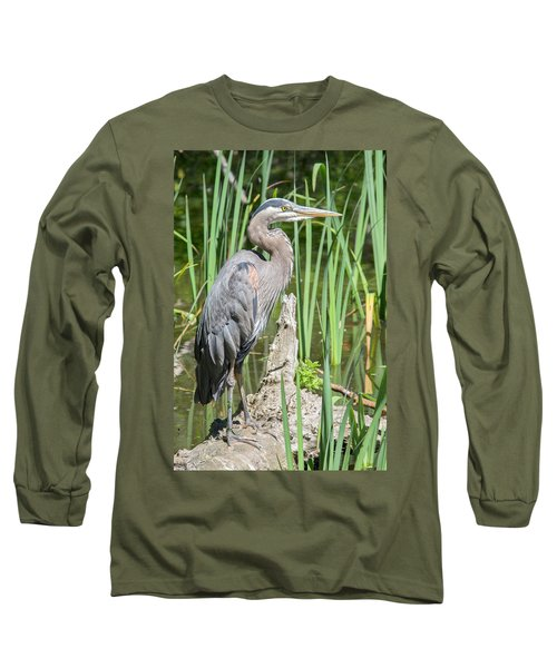 Lost Lagoon Heron Long Sleeve T-Shirt by Ross G Strachan
