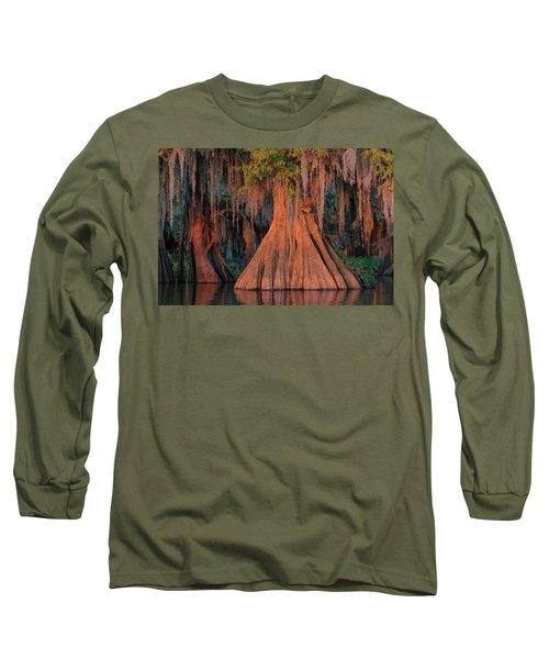 Louisiana Bald Cypress Tree Long Sleeve T-Shirt