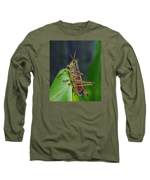 Lubber Grasshopper Long Sleeve T-Shirt by Richard Rizzo