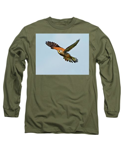Long Sleeve T-Shirt featuring the photograph Male Kestrel In The Wind. by Paul Scoullar