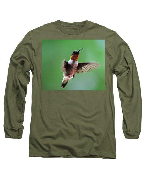 Male Ruby-throated Hummingbird Long Sleeve T-Shirt by Kathy Eickenberg