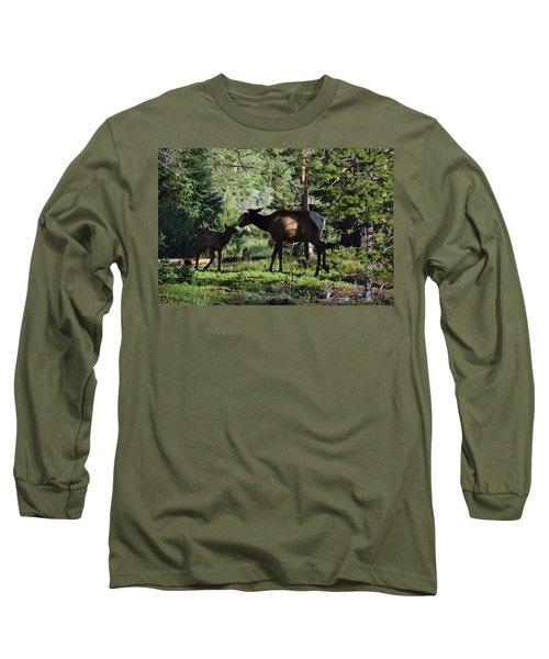 Elk Calf - Mother Rmnp Co Long Sleeve T-Shirt