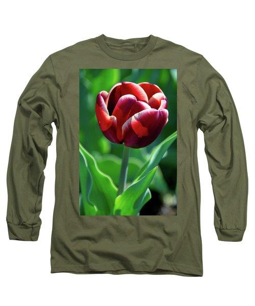 Maroon Tulip Long Sleeve T-Shirt