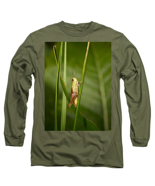 Long Sleeve T-Shirt featuring the photograph Meadow Grasshopper by Jouko Lehto