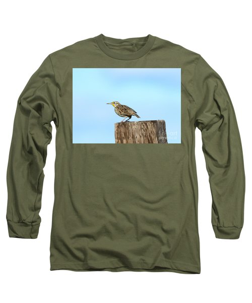 Meadowlark Roost Long Sleeve T-Shirt by Mike Dawson
