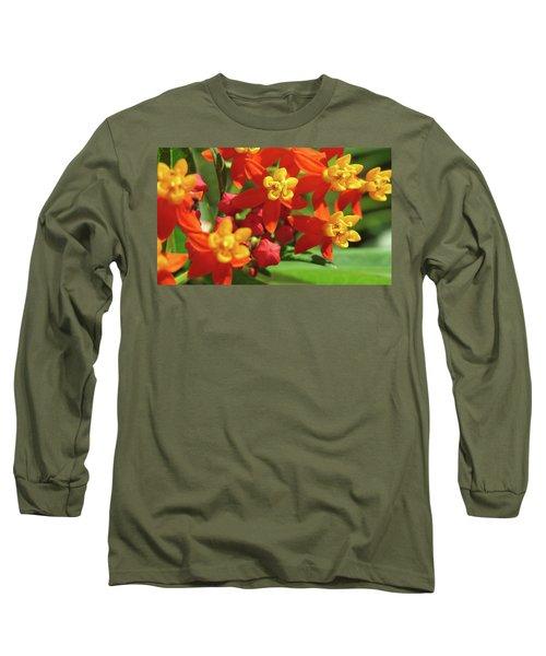 Milkweed Flowers Long Sleeve T-Shirt by Melinda Saminski