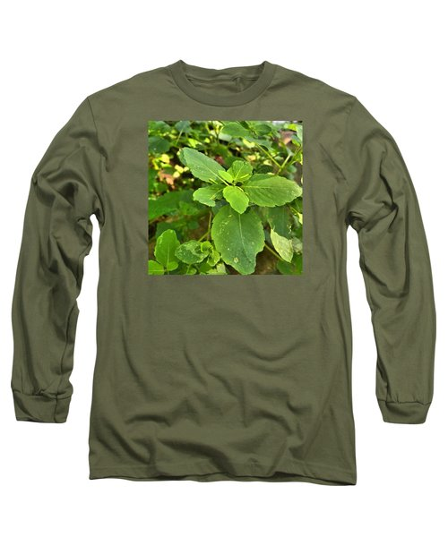 Long Sleeve T-Shirt featuring the photograph Minnesota Plant Life by Lisa Piper