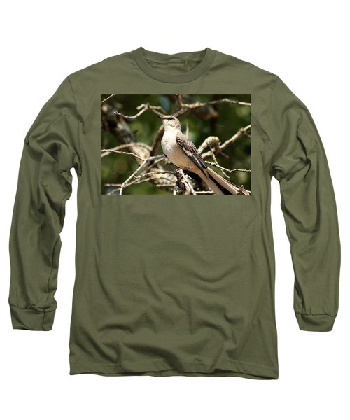 Long Sleeve T-Shirt featuring the photograph Mockingbird  by Sheila Brown