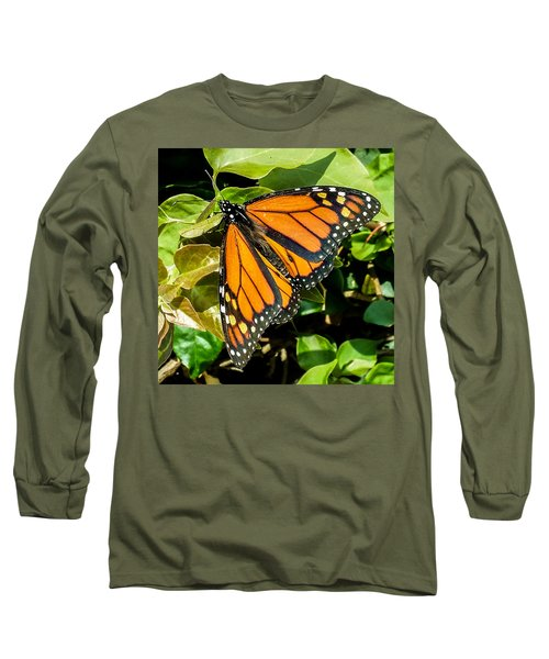 Monarch Long Sleeve T-Shirt by Mark Barclay