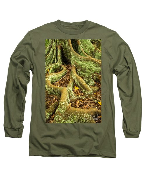 Long Sleeve T-Shirt featuring the photograph Moreton Bay Fig by Werner Padarin