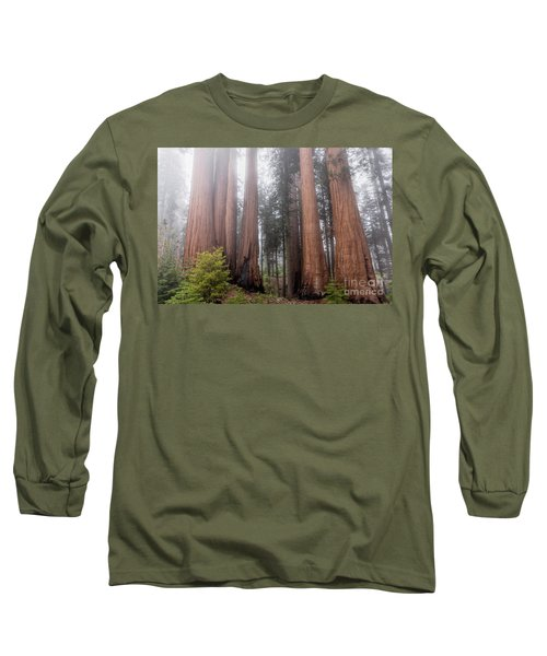 Long Sleeve T-Shirt featuring the photograph Morning Light In The Forest by Peggy Hughes