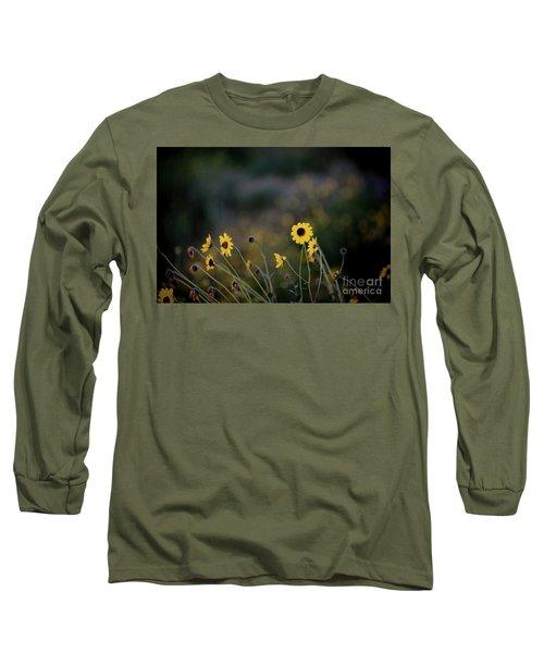 Morning Light Long Sleeve T-Shirt by Kelly Wade