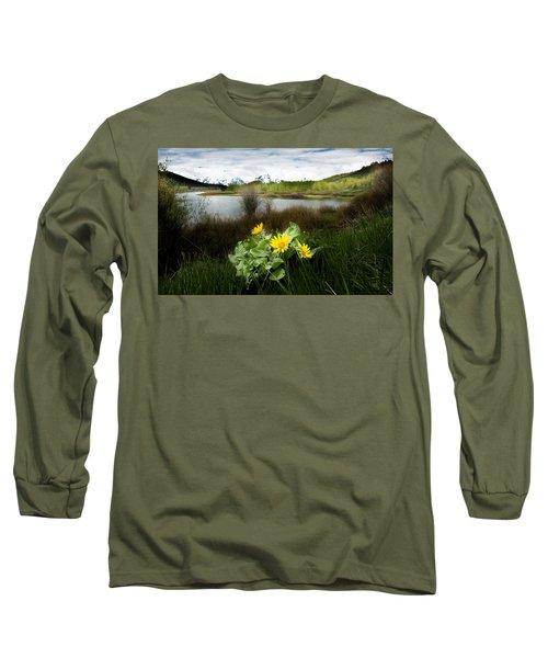 Mount Moran Spring Long Sleeve T-Shirt