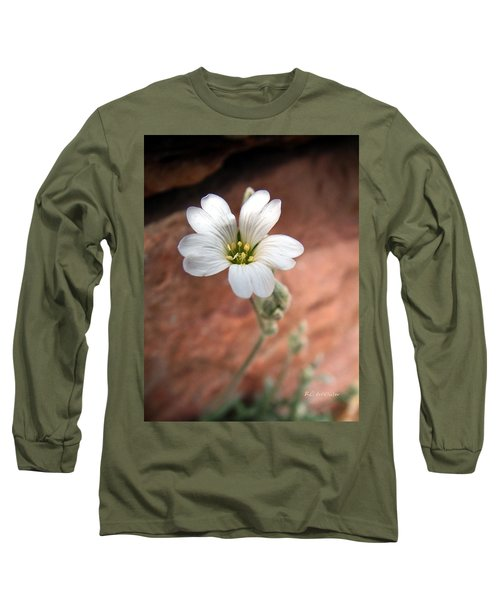 Mountain Beauty Long Sleeve T-Shirt by RC DeWinter