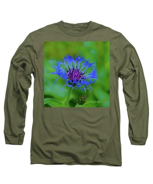 Mountain Cornflower Long Sleeve T-Shirt by Byron Varvarigos