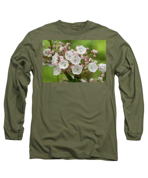 Mountain Laurel Long Sleeve T-Shirt by Henri Irizarri