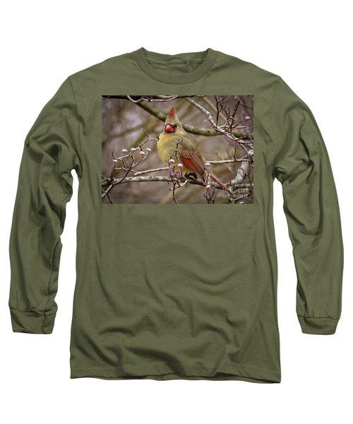 Long Sleeve T-Shirt featuring the photograph Mrs Cardinal by Douglas Stucky
