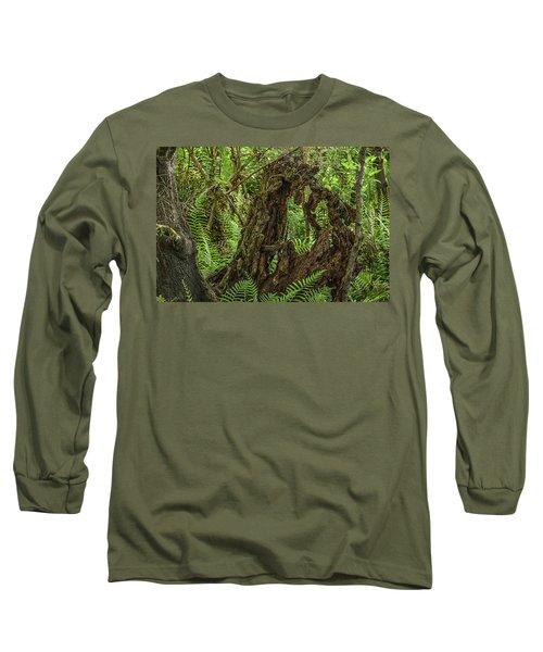 Nature's Sculpture Long Sleeve T-Shirt