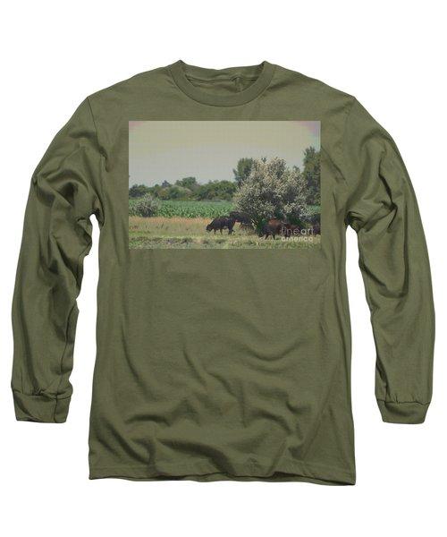 Nebraska Farm Life - Black Cows Grazing Long Sleeve T-Shirt