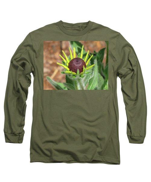 New Daisy Long Sleeve T-Shirt by Michele Wilson