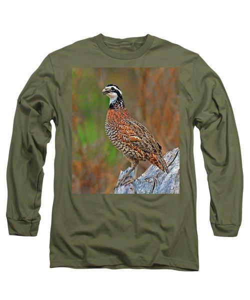 Northern Bobwhite Long Sleeve T-Shirt by Dave Mills