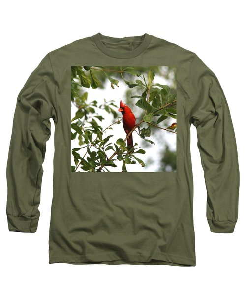 Northern Cardinal - In The Wind Long Sleeve T-Shirt