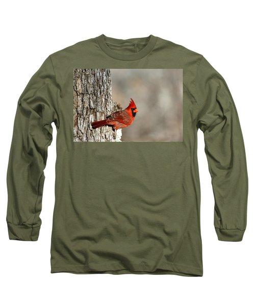 Northern Cardinal On Tree Long Sleeve T-Shirt