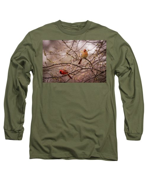 Long Sleeve T-Shirt featuring the photograph Northern Cardinal Pair In Spring by Terry DeLuco