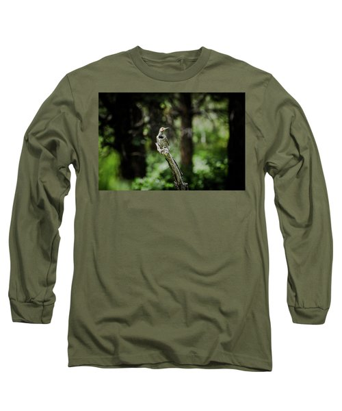 Northern Flicker Long Sleeve T-Shirt