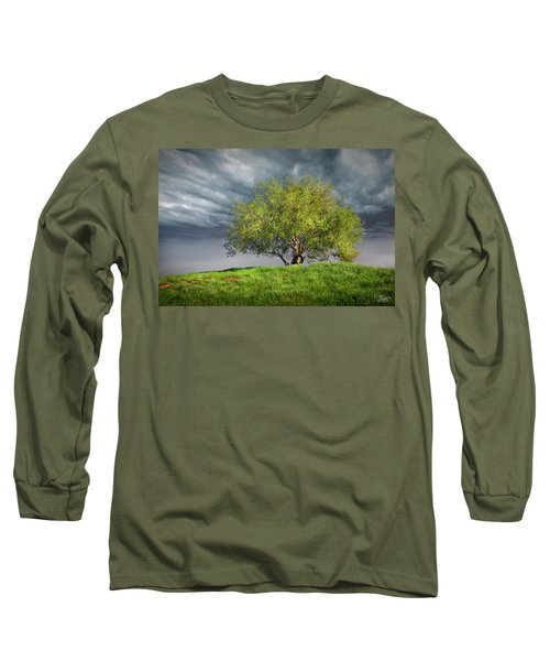 Oak Tree With Tire Swing Long Sleeve T-Shirt by Endre Balogh