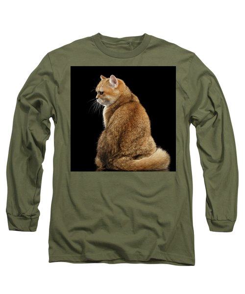 offended British cat Golden color Long Sleeve T-Shirt