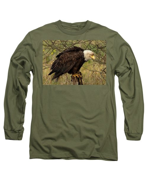 Old Eagle Long Sleeve T-Shirt