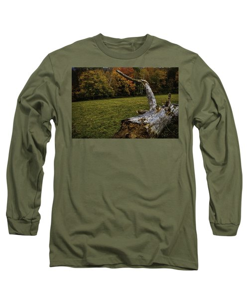 Old Tree Trunk Long Sleeve T-Shirt