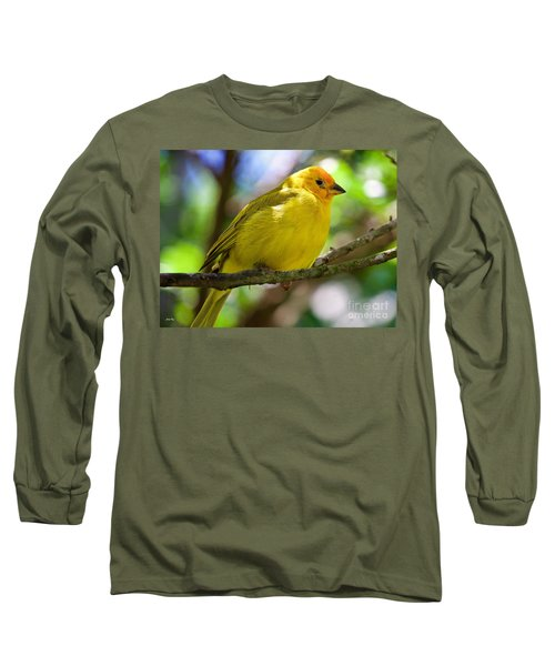 Ole Yellow Long Sleeve T-Shirt by Judy Kay
