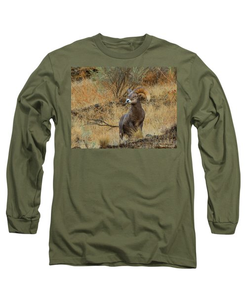 On Guard Long Sleeve T-Shirt by Steve Warnstaff