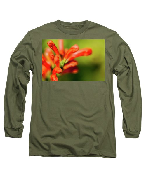 Orange And Green Long Sleeve T-Shirt
