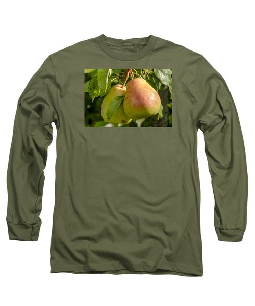 Organic Pears Hanging In Orchard Long Sleeve T-Shirt by Teri Virbickis
