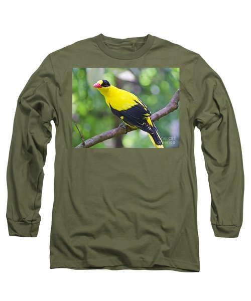 Oriole Wonder Long Sleeve T-Shirt by Judy Kay