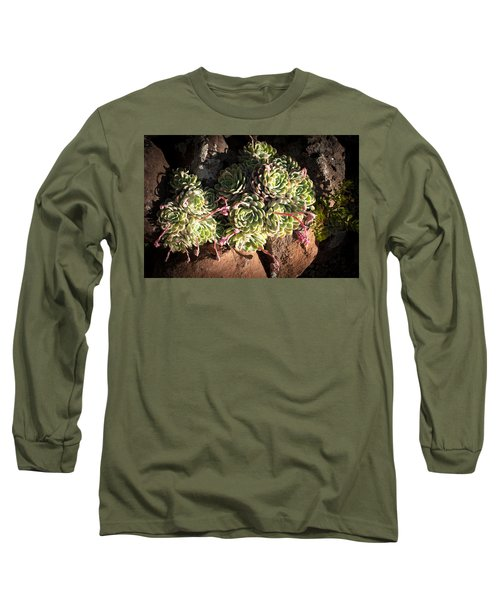 Out Door Succulents Long Sleeve T-Shirt by Catherine Lau