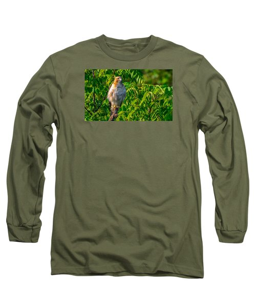 Out On A Limb 3 Long Sleeve T-Shirt by Brian Stevens