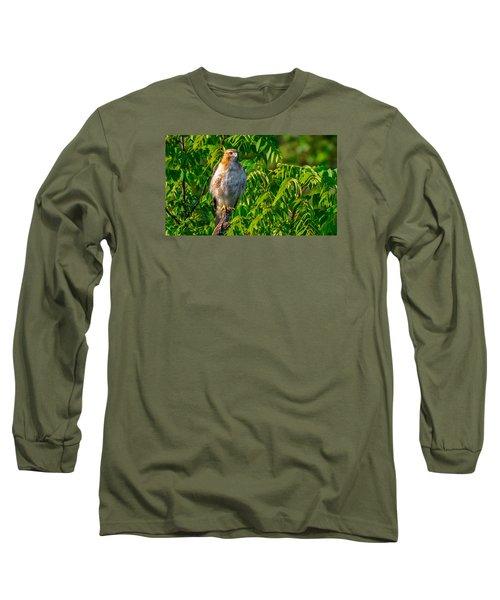 Out On A Limb 3 Long Sleeve T-Shirt