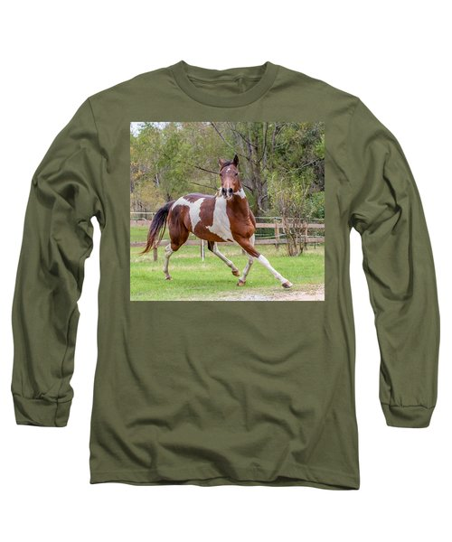 Paint Mare In Field Long Sleeve T-Shirt