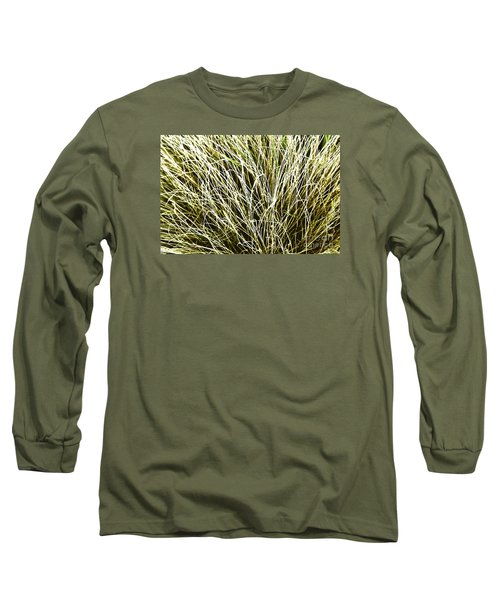 Pale Grasses Long Sleeve T-Shirt