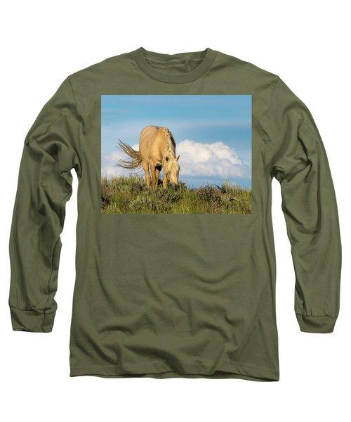 Palomino Wild Stallion In The Evening Light Long Sleeve T-Shirt