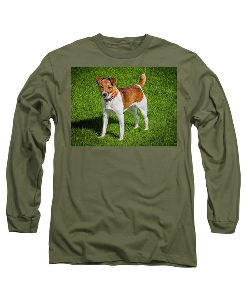 Long Sleeve T-Shirt featuring the photograph Parson Jack Russell by Nick Bywater
