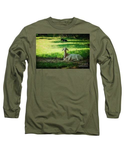 Peaceful Pasture Long Sleeve T-Shirt