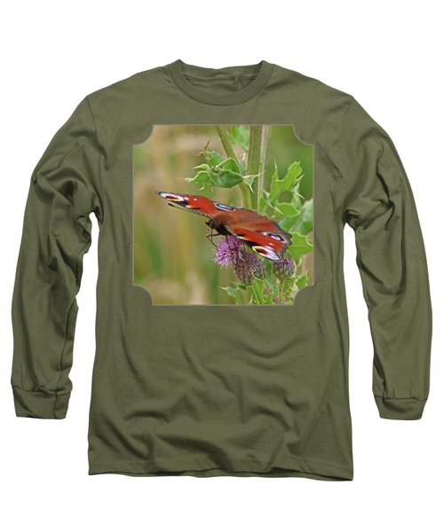 Peacock Butterfly On Thistle Square Long Sleeve T-Shirt by Gill Billington