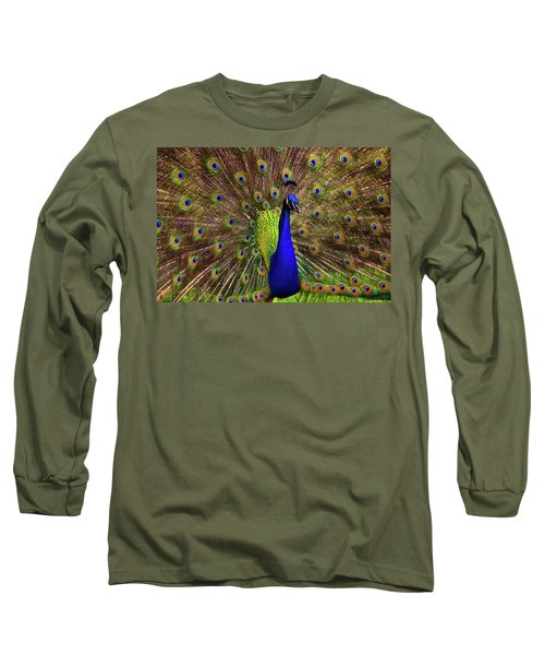 Peacock Showing Breeding Plumage In Jupiter, Florida Long Sleeve T-Shirt by Justin Kelefas